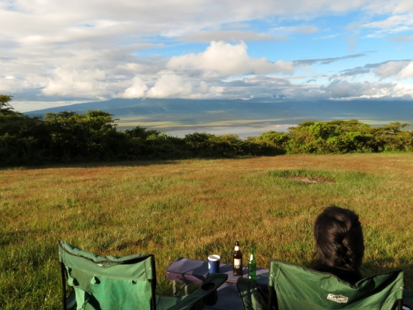 Where the Wild Things Are — The Last Safari